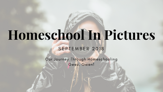 Homeschool Blog Series
