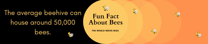 Fun fact about bees.
