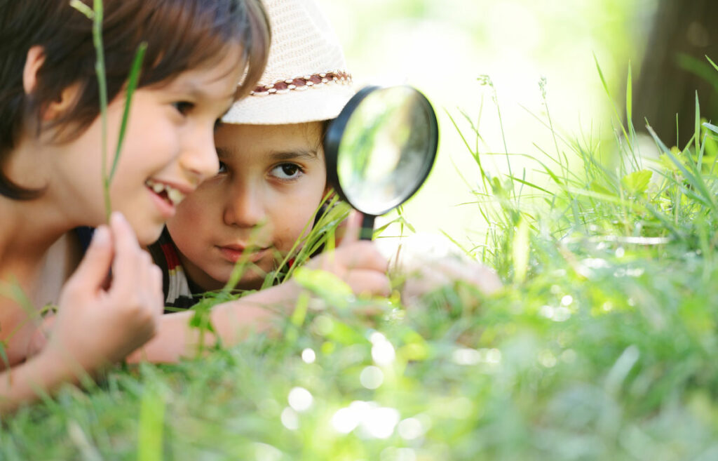 Children explore nature together and create a nature journal.